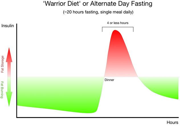 20 4 Warrior Diet For Women - deltoday
